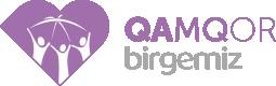 Birgemiz: Qamqor